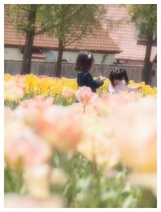f0150243_2016946.jpg