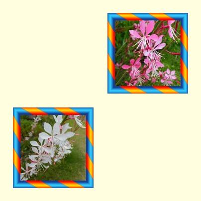f0031546_16263323.jpg