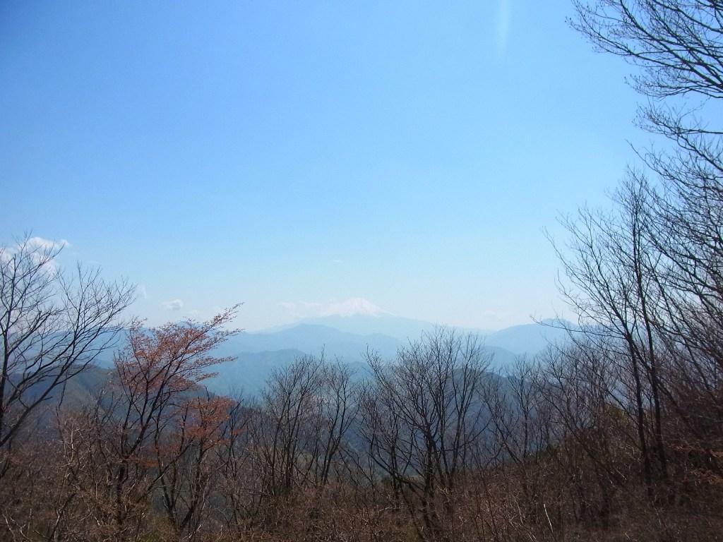 2013/04/28 権現山 麻生山 三ッ森北峰 前編_d0233770_1582459.jpg