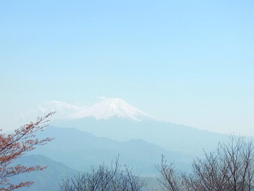 2013/04/28 権現山 麻生山 三ッ森北峰 前編_d0233770_1583940.jpg
