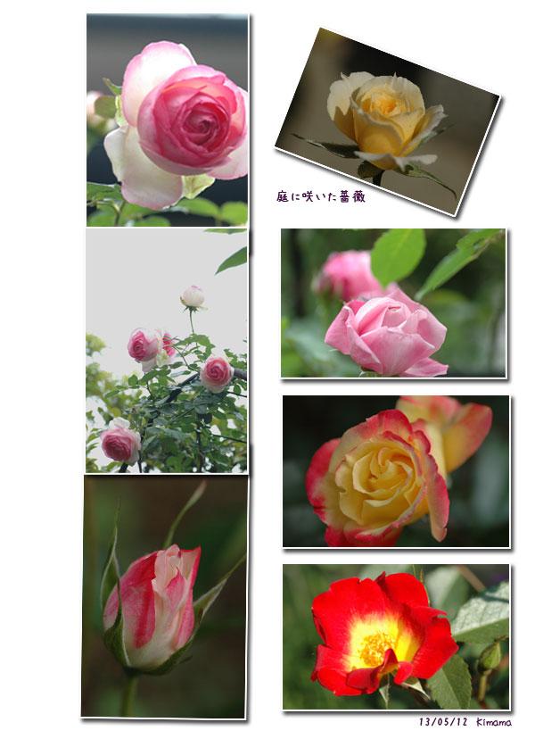 母の日_c0051105_0121950.jpg