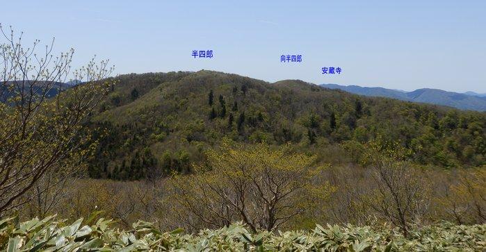 広見山(1187m)_f0219710_734841.jpg