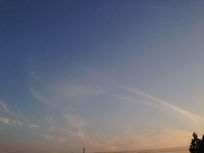 5/12の空。〜大きな羽〜_b0253627_23383989.jpg