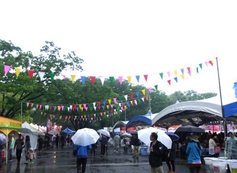タイフェスティバル2013_d0156336_0324190.jpg