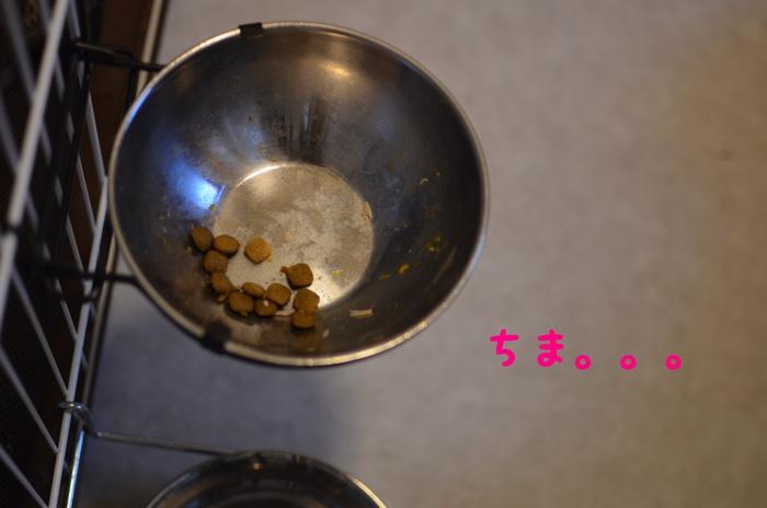 f0248867_2010102.jpg