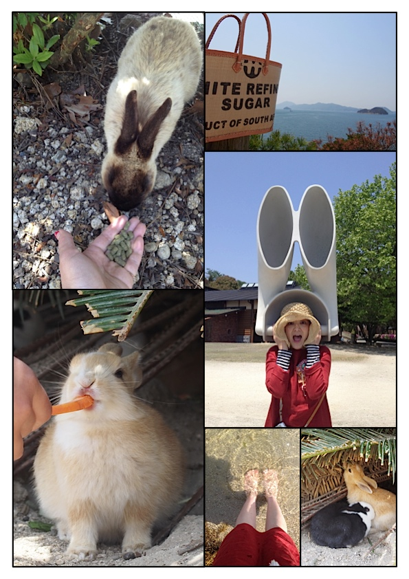 ウサギの島_e0158970_2240868.jpg