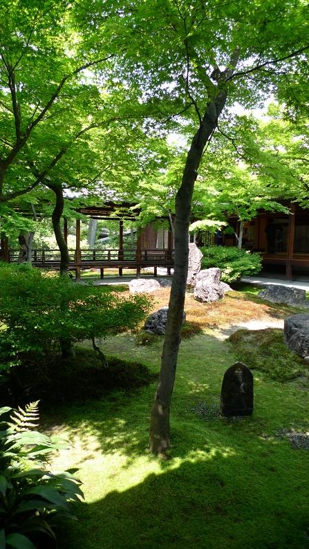 3週連続京都。_a0188798_21132718.jpg