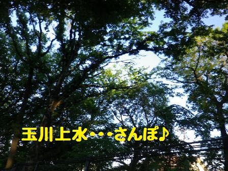 b0239151_124179.jpg