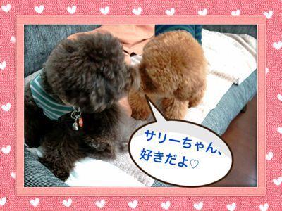 b0220958_2010241.jpg