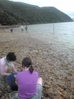 もずくが浜にやってきた!_e0220493_11395343.jpg