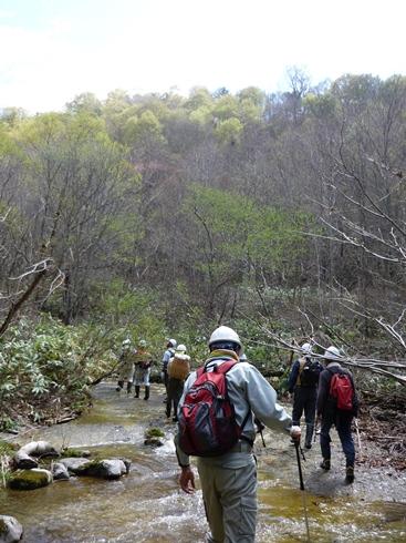 きこりの森ハイキング一回目に行ってきました。_f0227395_1523916.jpg