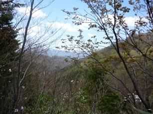 きこりの森ハイキング一回目に行ってきました。_f0227395_1572812.jpg