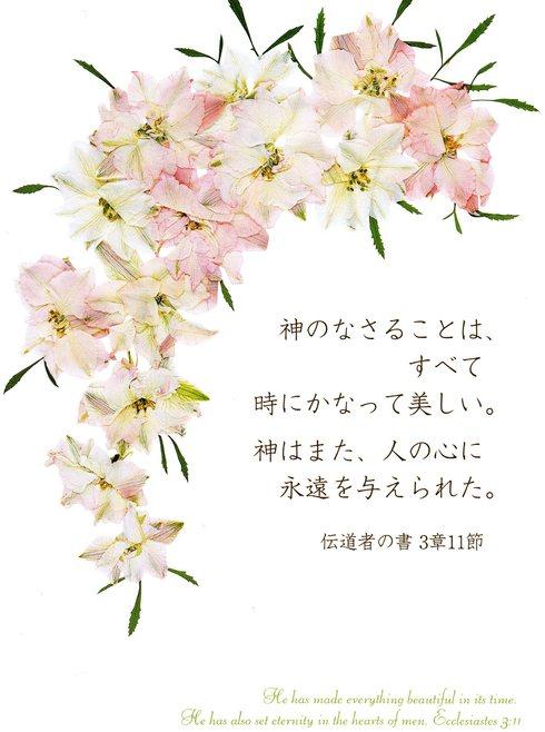 f0126417_15454382.jpg