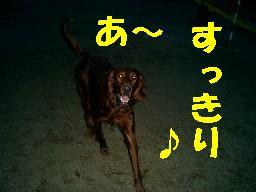 c0049339_1942640.jpg