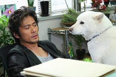 2013年いい男に囲まれた暮らし 日本男優編_e0059574_0481643.jpg