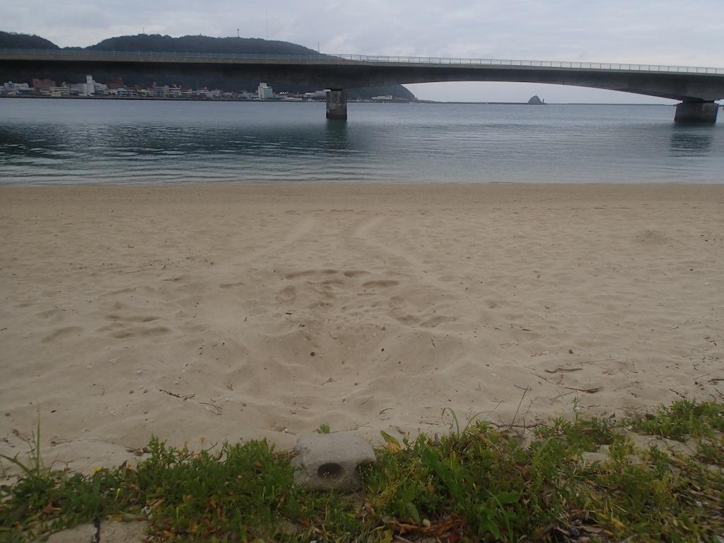 5/10 三角浜にアカ上陸_a0010095_1053787.jpg