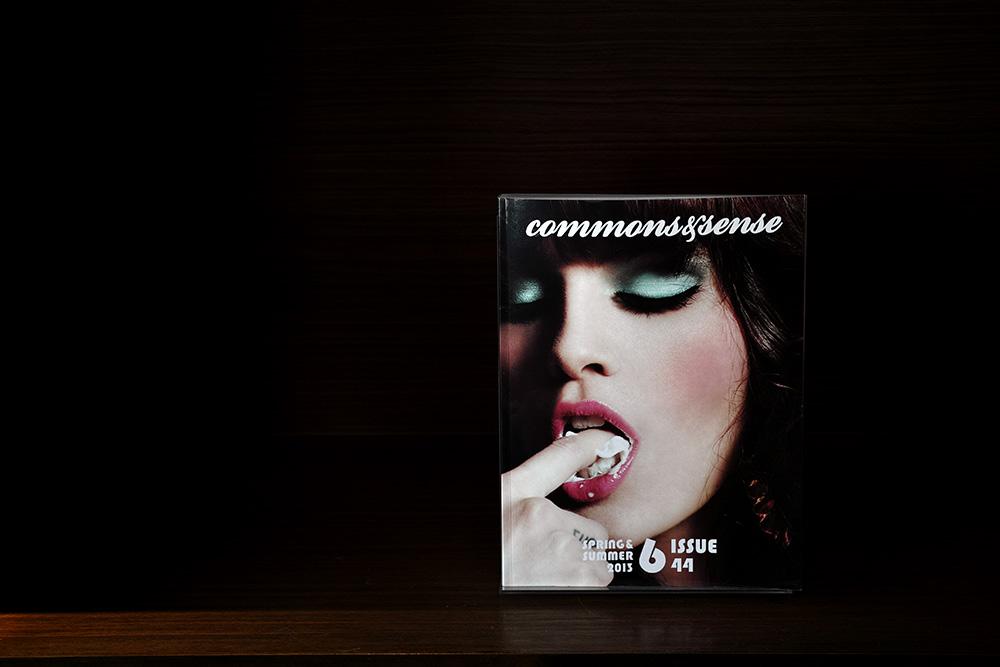 Bookshelf #DP3 Merrill_c0065410_0174279.jpg