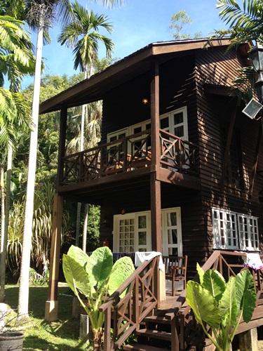 地獄リゾート☆Manukan Island Resort _e0182138_12583647.jpg
