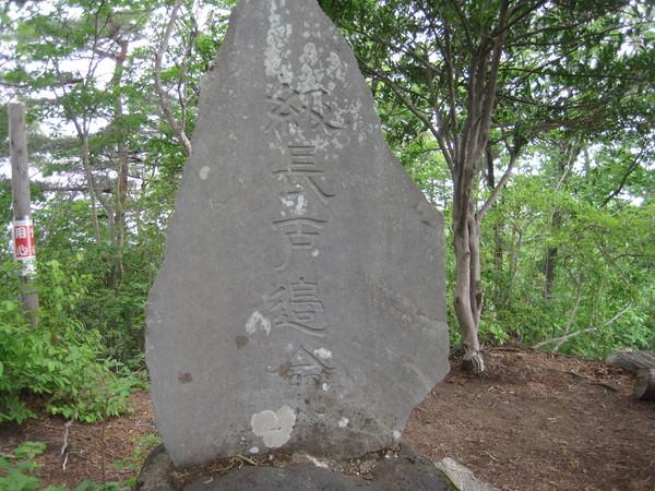 2013稲沢ハイキング!_a0259243_18401423.jpg