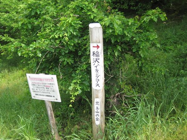 2013稲沢ハイキング!_a0259243_1871968.jpg