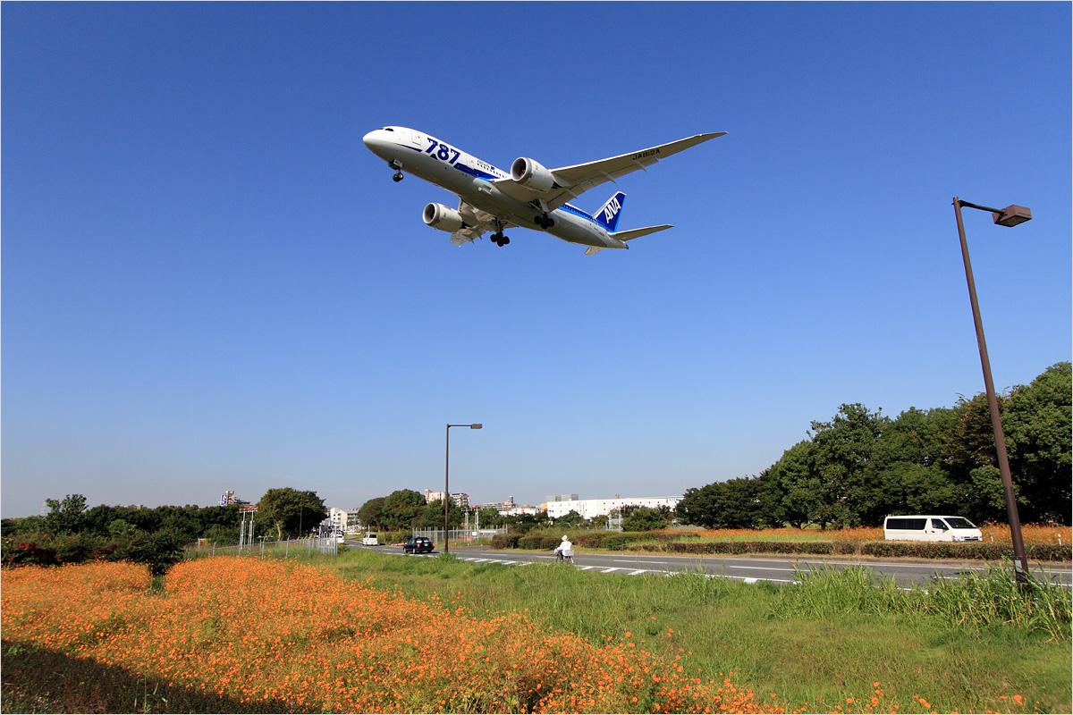 視点 - 福岡空港_c0308259_2256846.jpg