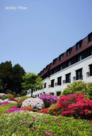 hotel de Yama in Spring  春の箱根 山のホテル_e0253364_13292866.jpg