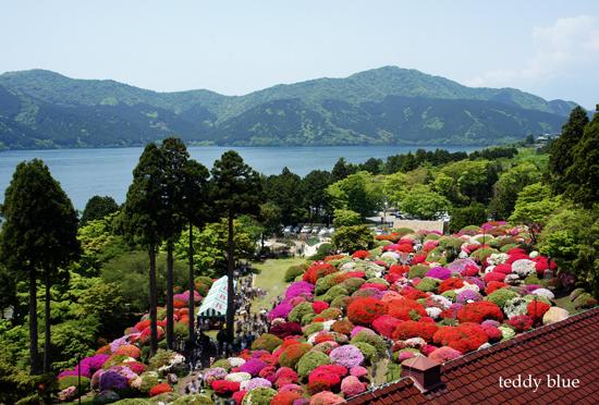 hotel de Yama in Spring  春の箱根 山のホテル_e0253364_15113236.jpg