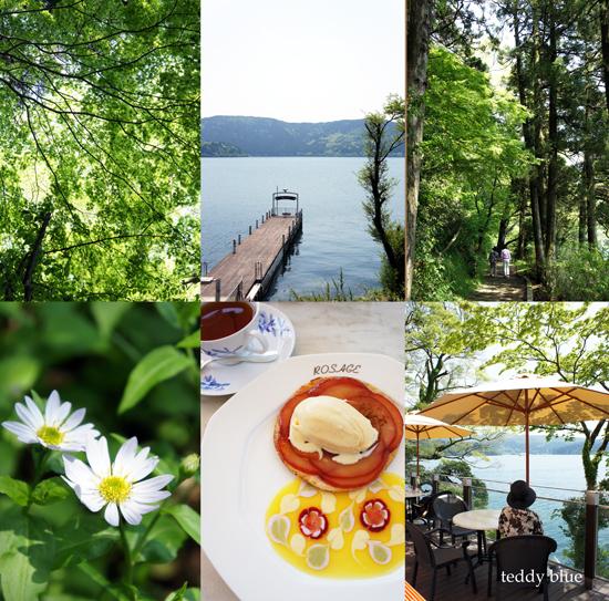 hotel de Yama in Spring  春の箱根 山のホテル_e0253364_17373671.jpg
