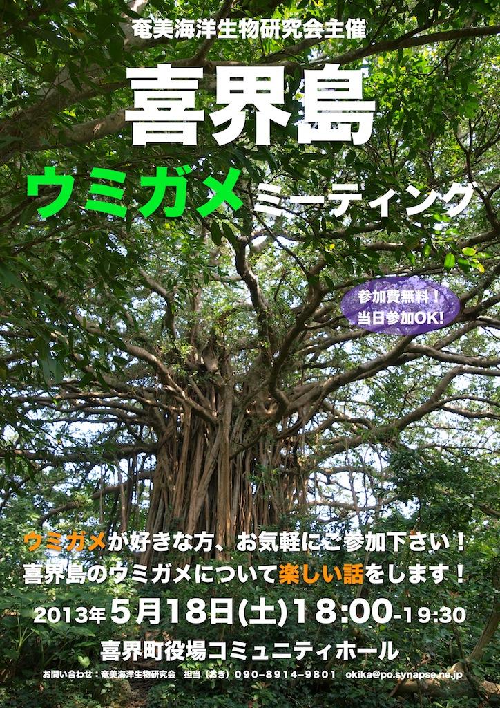喜界島ウミガメミーティング開催のお知らせ_a0010095_2053493.jpg
