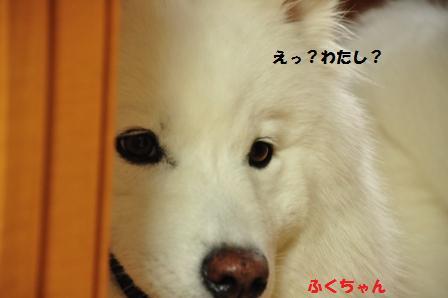 f0212597_18361436.jpg
