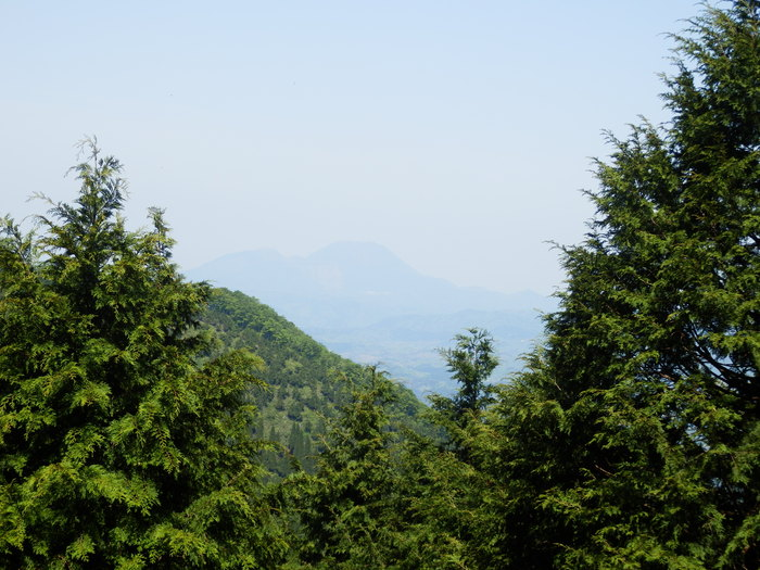 指谷奥山(1048m9_f0219710_757144.jpg