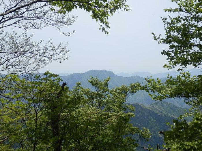 指谷奥山(1048m9_f0219710_862368.jpg