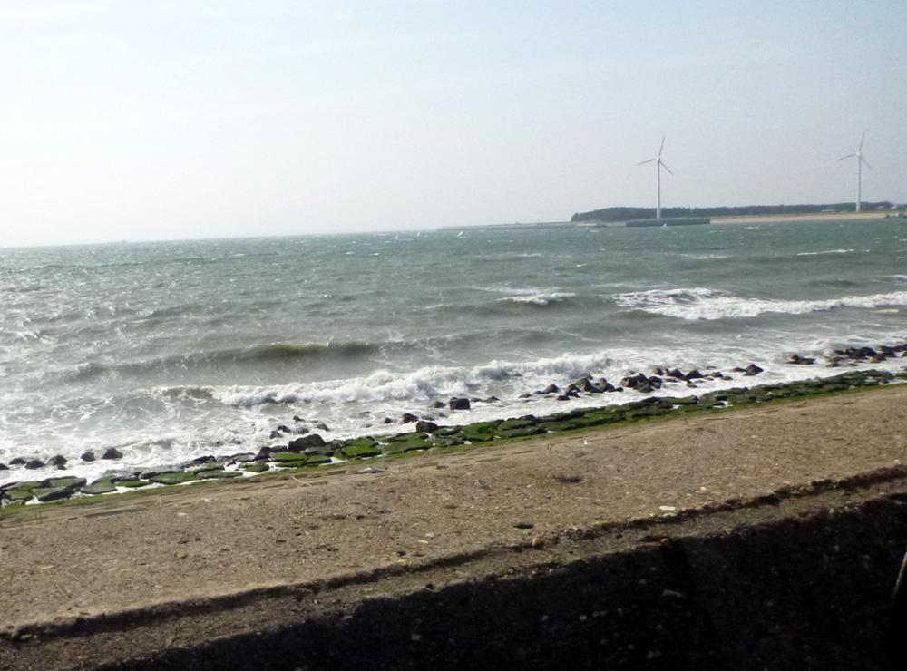 知多半島へ行ってきました。 2013年5月16日(木)_d0171823_2253623.jpg