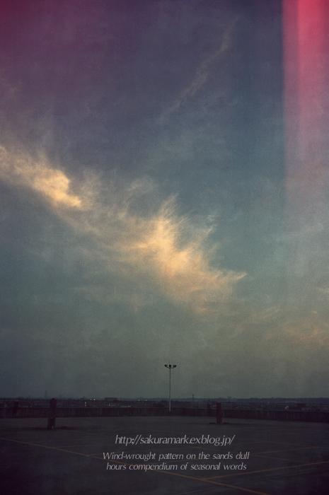 うっすらと染まる巻雲・・・。_f0235723_200657.jpg