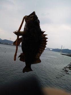 休みともなれば釣り_a0007462_1826389.jpg