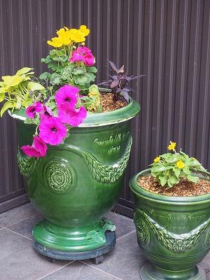 春の庭の手入れ_d0133485_716582.jpg