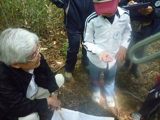 安蔵寺山ブナ林を歩く のご案内_d0087595_16205679.jpg