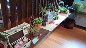 cafe growth【彦根のカフェ】_c0093196_12454918.jpg
