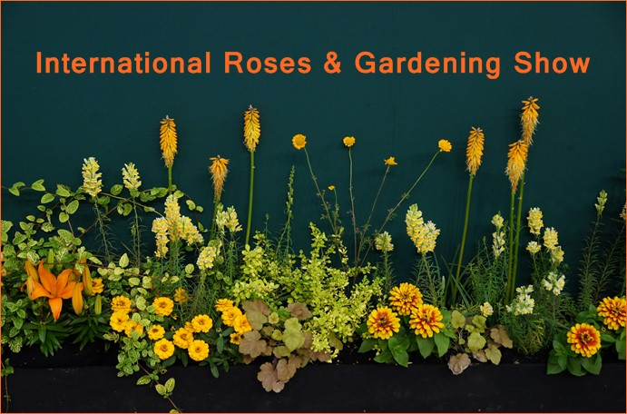 第15回 国際バラとガーデニングショウ オードリー・ヘップバーンが愛した庭_b0145398_17234054.jpg