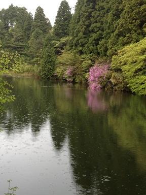 神戸の山_f0191715_1044480.jpg