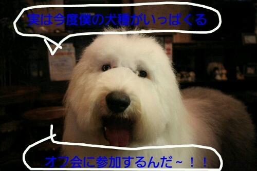 b0130018_22402031.jpg