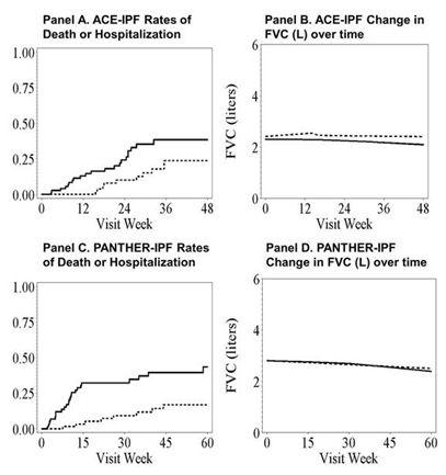 ATS2013:特発性肺線維症の臨床試験における肺活量と臨床的エンドポイントの解離_e0156318_20502655.jpg