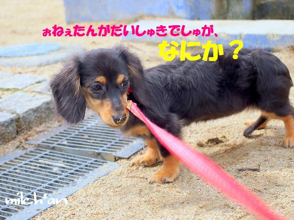 b0115642_2243212.jpg