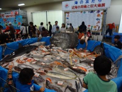 沼津と言えば「水産祭」!_d0050503_11563862.jpg