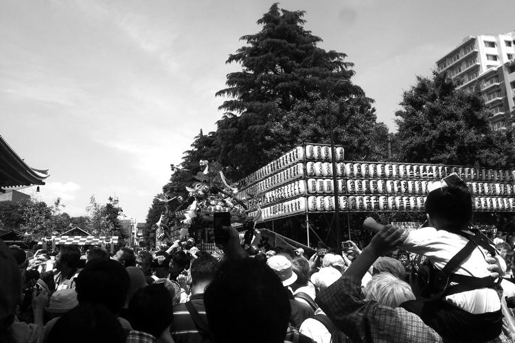 三社祭・2013 前編_b0053019_1740424.jpg