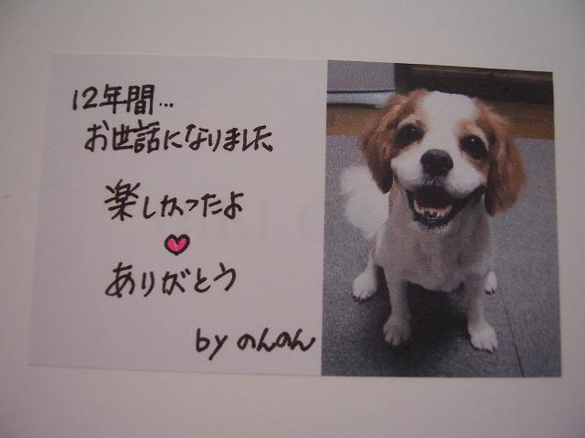 c0048940_19505217.jpg