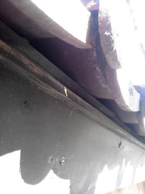 スズメ止め! 板橋区高島平で瓦屋根工事。_c0223192_2182768.jpg