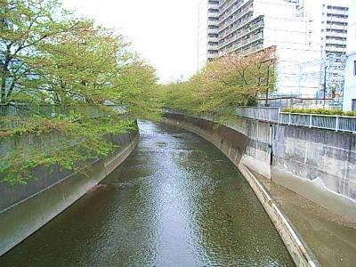 神田川ラン_a0036808_1553535.jpg
