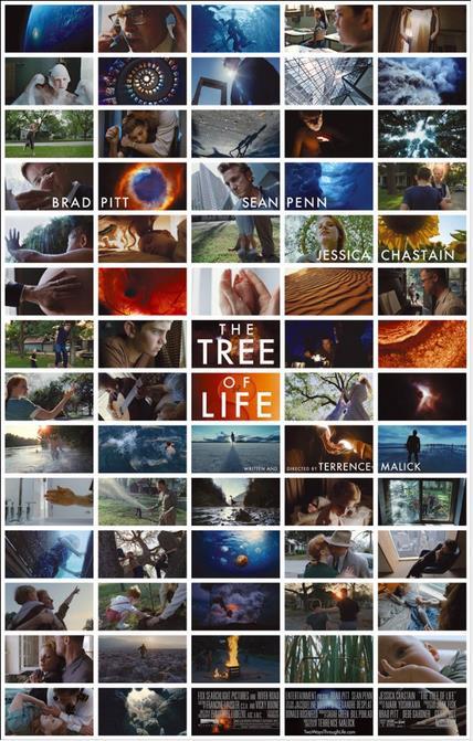 Tree of Life (生物系統樹と映画タイトル)_c0025115_2381811.jpg