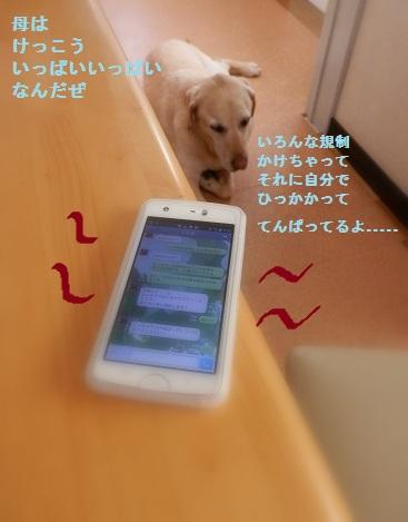 b0226221_9303028.jpg